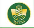 Иркутский ГАУ – Иркутский государственный аграрный университет имени А.А. Ежевского